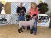 Grand Chamion Lamb - Kendra Wagner