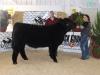 Reserve Grand Champion Beef - Kauy Fargo