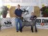 Reserve Grand Champion Lamb - Sydney Cherny