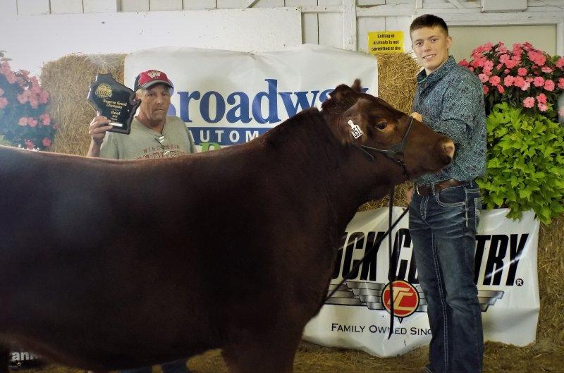 Reserve Grand Champion Market Steer - Austin Lynd