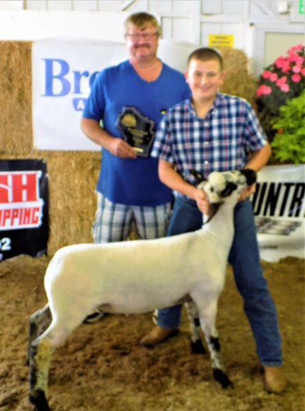 Reserve Grand Champion Lamb - Matt Boeder