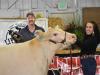 Reserve Grand Champion Market Steer